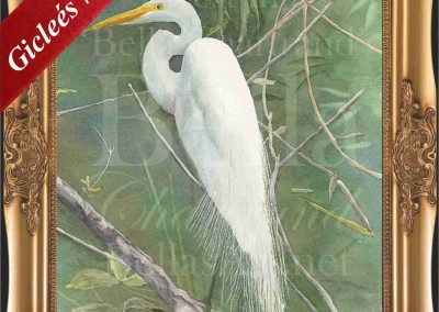 Egret_Watercolor_Painting_Bella Chartrand Survival Reality TV Show Utopia
