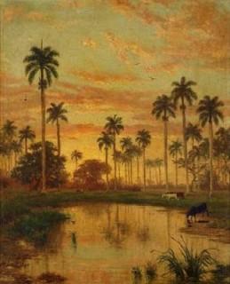 Lucero De Oro Tras Verde Palma (Golden Sky and Green Palms)