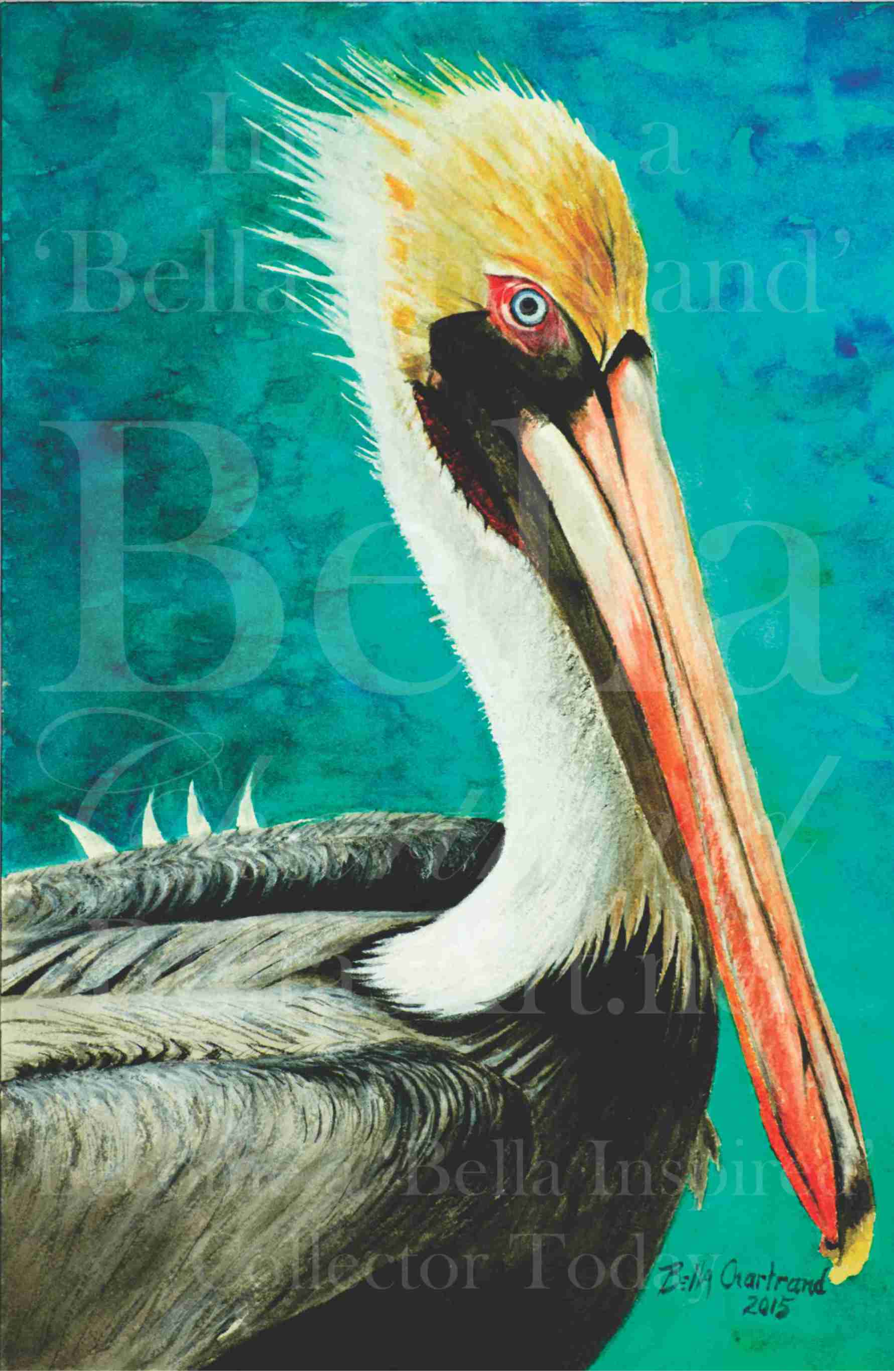 """""""Spike the Pelican"""" from Bella Inspired Seascape Collection by Bella Chartrand from Utopia USA"""