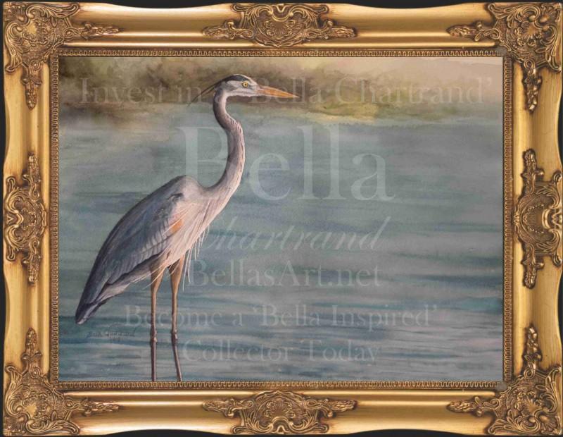 Great Blue Heron Bella Blue Heron Watercolor_Painting_Bella Chartrand Survival Reality TV Show Utopia