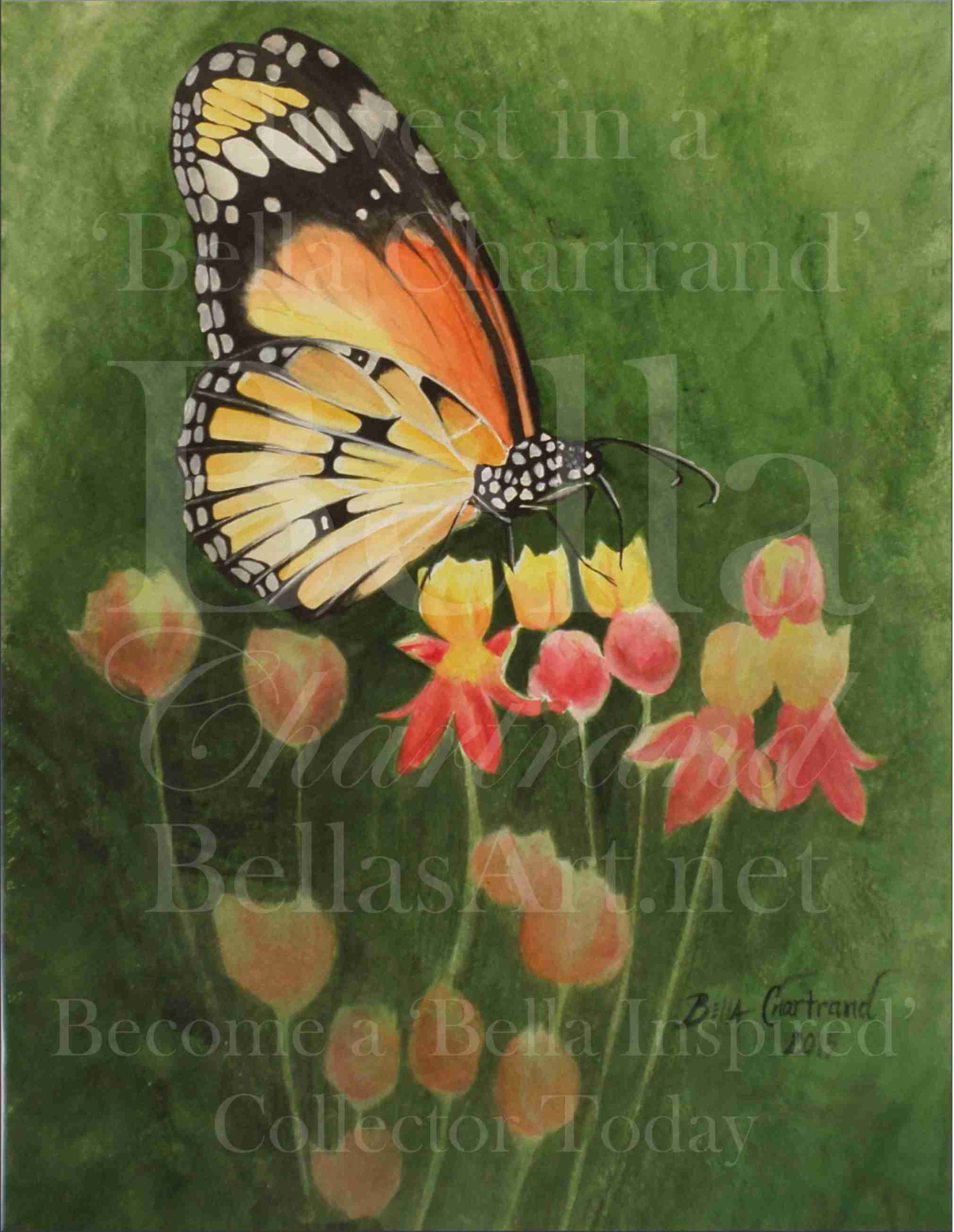 """Monarch Butterfly"" from Bella Inspired Butterfly Collection by Bella Chartrand from Utopia USA"